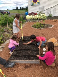 Everyone helps fill and plant the garden box.